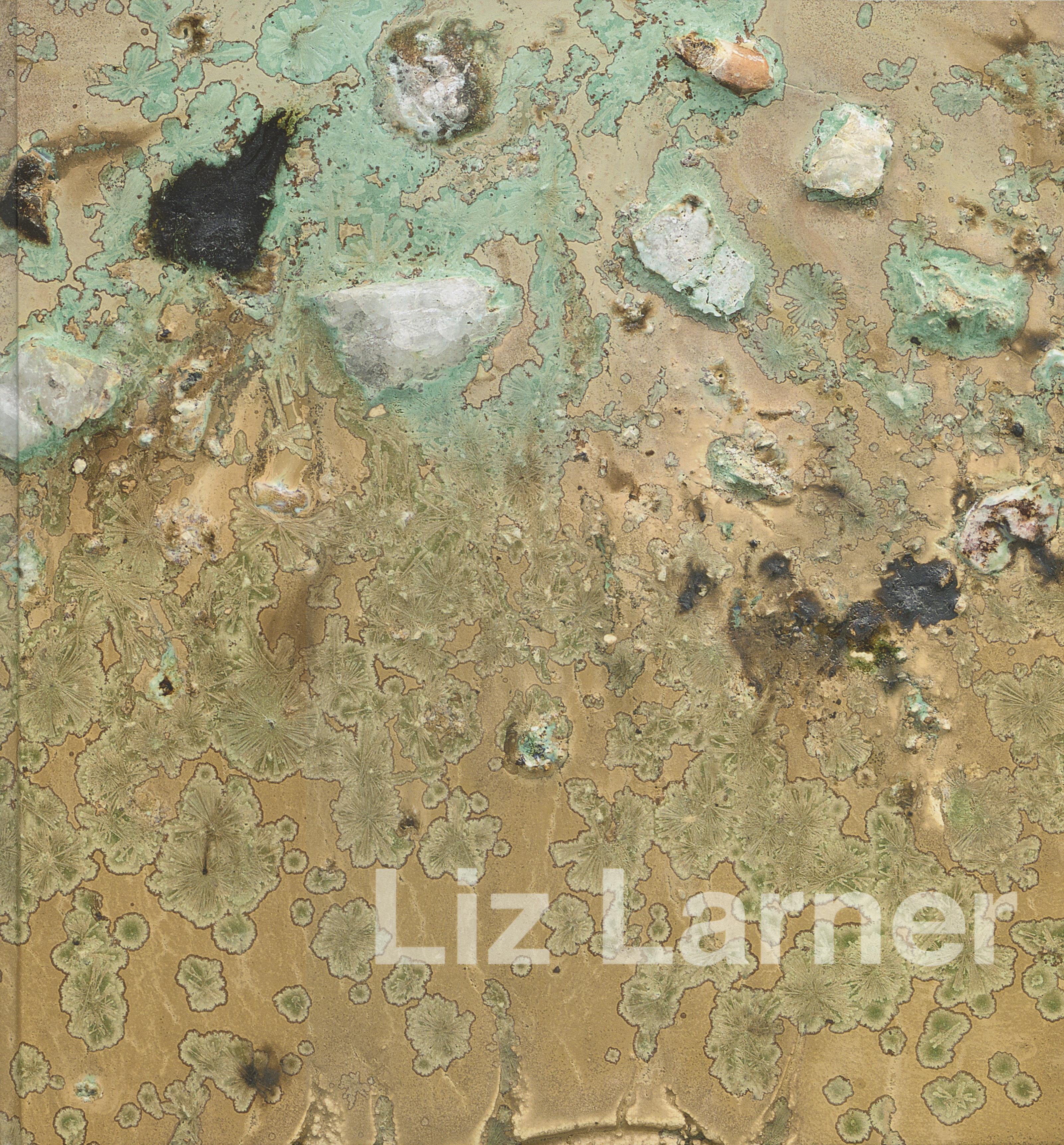 Liz Larner - Galerie Max Hetzler